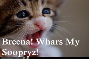 Breena! Whars My Soopryz!