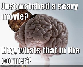 Just watched a scary movie?  Hey, whats that in the corner?