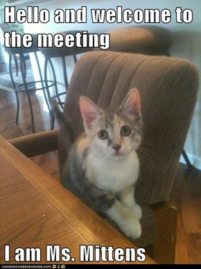 Hello and welcome to the meeting  I am Ms. Mittens