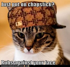 Scumbag Cat: You Know What's Great for Chapped Lips? Fur