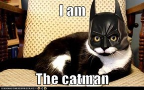 I am  The catman
