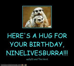 HERE'S A HUG FOR YOUR BIRTHDAY, NINELIVESBURRA!!!