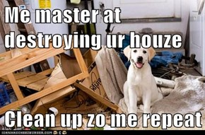 Me master at destroying ur houze  Clean up zo me repeat