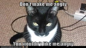 Don't make me angry  You wouldn't like me angry