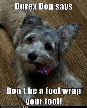 Durex Dog says  Don't be a fool wrap your tool!