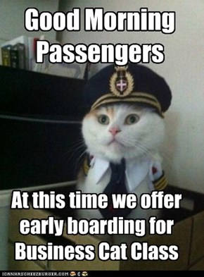 Captain Kitteh: Those Who Complain About Waiting Have First World Cat Problems