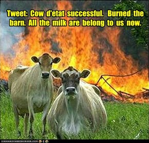 Tweet:  Cow  d'etat  successful.   Burned  the  barn.  All  the  milk  are  belong  to  us  now.