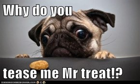 Why do you  tease me Mr treat!?