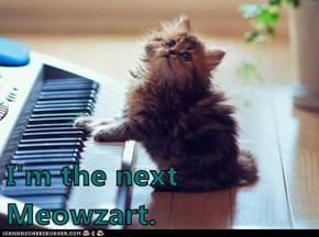 I'm the next Meowzart.
