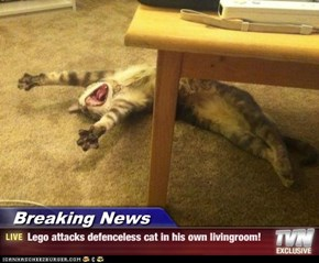 Lego attacks defenceless cat in his own livingroom!