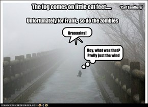 The fog comes on little cat feet.....