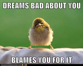 DREAMS BAD ABOUT YOU  BLAMES YOU FOR IT