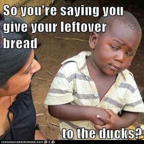 So you're saying you give your leftover bread  to the ducks?