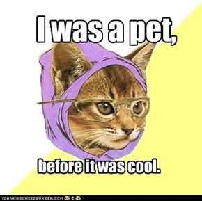 Oh hipsta kitteh