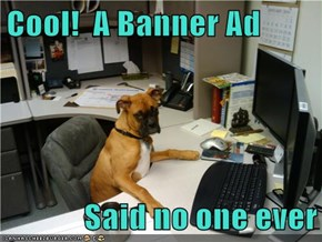 Cool!  A Banner Ad  Said no one ever