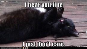 I hear you fine  I just don't care.