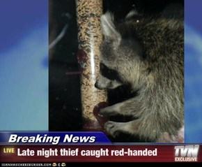 Breaking News - Late night thief caught red-handed