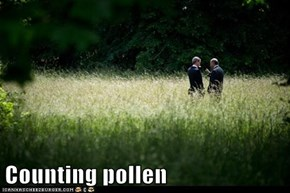 Counting pollen