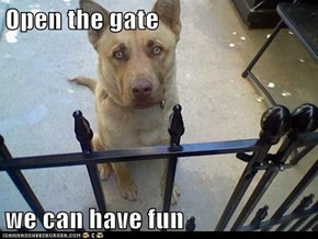 Open the gate  we can have fun