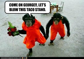 COME ON GEORGE!!, LET'S BLOW THIS TACO STAND.