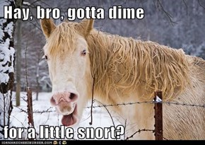 Hay, bro, gotta dime  for a little snort?