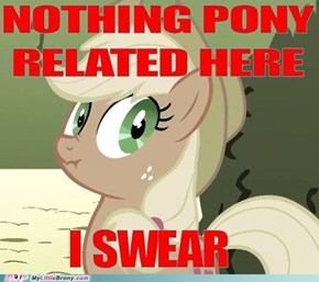 Yeah I Totally Believe You AppleJack