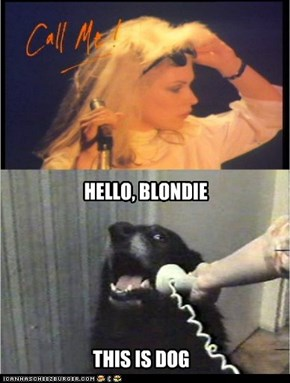 Call me dog, Blondie