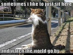 sometimes i like to just sit here  and watch the world go by