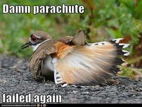 Damn parachute  failed again