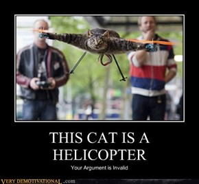 THIS CAT IS A HELICOPTER