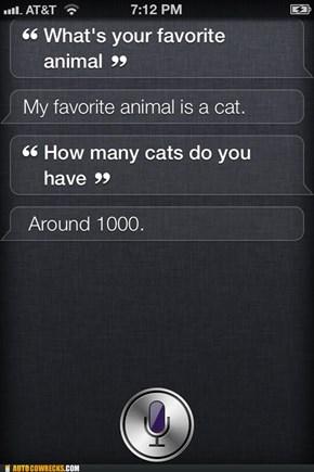 Siri, I Think You Have a Problem