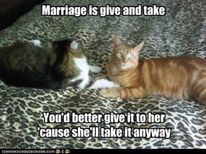 Married Cats