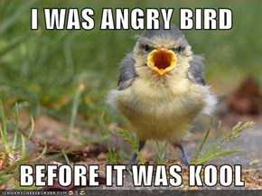 I WAS ANGRY BIRD  BEFORE IT WAS KOOL