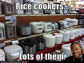 Rice cookers...  Lots of them.