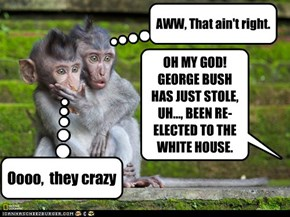 OH MY GOD!  GEORGE BUSH HAS JUST STOLE, UH..., BEEN RE-ELECTED TO THE WHITE HOUSE.