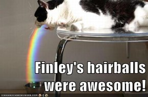 Finley's hairballs were awesome!