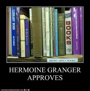 HERMOINE GRANGER APPROVES
