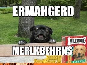 Ermahgerd! Er'm a Perg!
