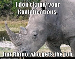 I don't know your Koalafications,  but Rhino who gets the job