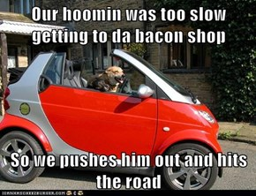 Our hoomin was too slow getting to da bacon shop  So we pushes him out and hits the road