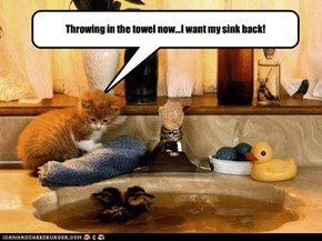 I want my sink back