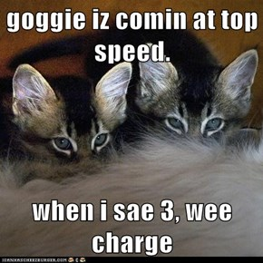 goggie iz comin at top speed.  when i sae 3, wee charge