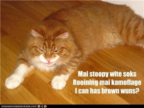 Stoopy Soks Haiku