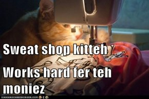 Sweat shop kitteh Works hard fer teh moniez