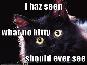I haz seen what no kitty should ever see