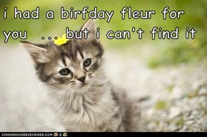 i had a birfday fleur for you  ... but i can't find it