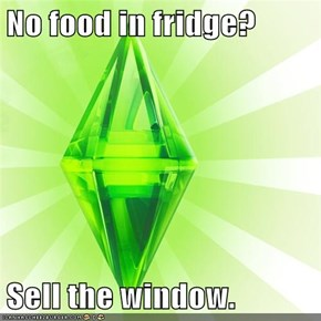 No food in fridge?  Sell the window.