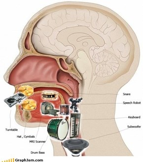 The Anatomy of a Beatboxer