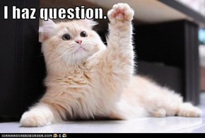 I haz question.