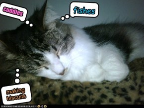 Dreaming kitteh